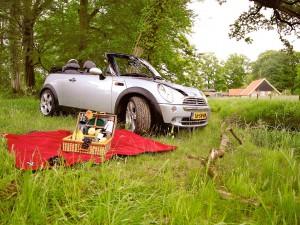 Picknick met Mini