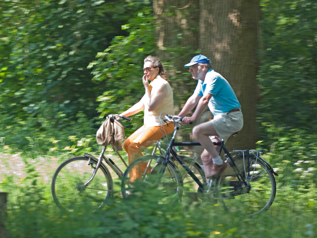 Fietsen in Twickel