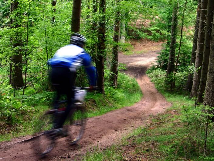 Mountainbike (routes bij het hotel)