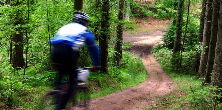 Mountainbike in Twente - Hotel het Wapen van Delden